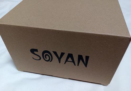 soyan1