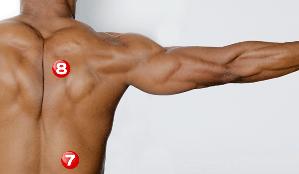 muscle-practice-sub2