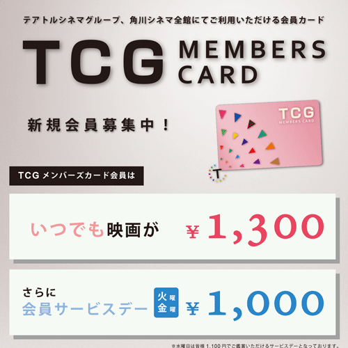 ttcg-discount-price-method-sub1