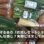 daichiwomamorukai-review-main