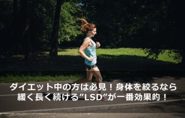 diet-effective-long-slow-distance-main