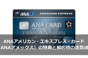 ANAアメリカン・エキスプレス・カード(ANAアメックス)の特典と解約時の注意点